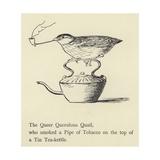 The Queer Querulous Quail