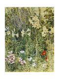 Larkspurs and Lillies  1893