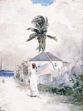Along the Road  the Bahamas  1885