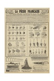 Advertisement for Fishing Tackle