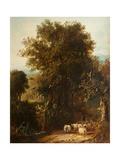 Norfolk Wooded Landscape
