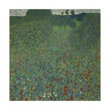 Field of Poppies  1907