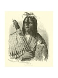 Cree Chief