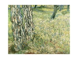 Tree Trunks in Grass  1890