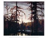 Beaver Swamp