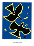 Oiseau Noir sur Fond Bleu