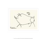 Petit cochon Sérigraphie par Pablo Picasso