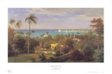 Bahamas Harbour 1882