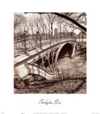 Central Park Bridge III
