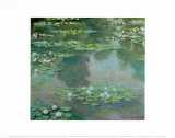 Waterlilies I 1905