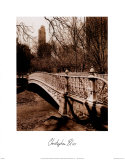 Central Park Bridge II
