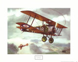 Sopwith Camel  1917