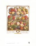 Twelve Months of Fruits  1732  September