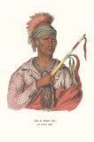 Ne-O-Mon-Ne  an Ioway Chief