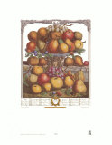 Twelve Months of Fruits  1732  December