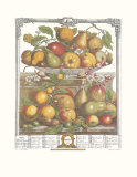 Twelve Months of Fruits  1732  March