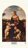Madonna  La Belle Jardiniere