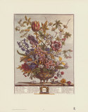 Twelve Months of Flowers  1730  February