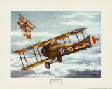 French Spad  1916