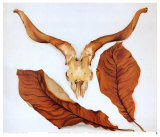 Ram&#39;s Skull with Brown Leaves