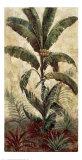 Exotic Palms I