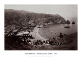 Avalon Harbor  Santa Catalina Island  California 1885