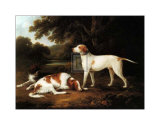 Pointer and Two Spaniels in a Park