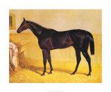 Sweetmeat  1846
