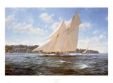 The Racing Schooner  Westward