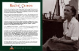 Women of Science - Rachel Carson