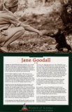 Women of Science - Jane Goodall