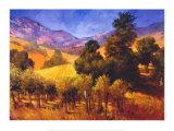 SouThern Vineyard Hills