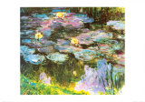 Violet Water Lilies