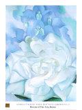 White Rose W/ Lakspur No.2 Reproduction d'art par Georgia O'Keeffe