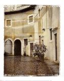 Italian Courtyard II