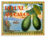 Deluxe Avacados