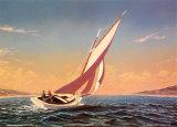 Friendship Sail
