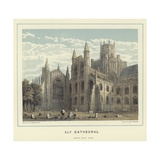Ely Cathedral  North West View