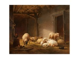 A Sunlit Barn with Ewes  Lambs and Chickens