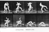 Two Men Wrestling  from 'Animal Locomotion'  1887