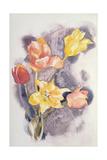 Bouquet  C1923