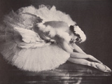 Anna Pavlova in 'The Swan'
