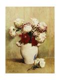 Chrysanthemums  1893