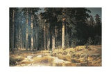 Forest  1898