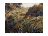 Algerian Landscape  1881