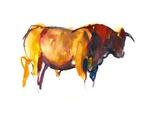 Sunset Bull  2010