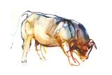 Little Bull  2010