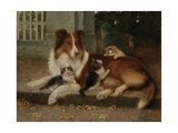Best of Friends  1906