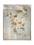Map of Animals in North America