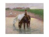 The Horse Pond  C1890
